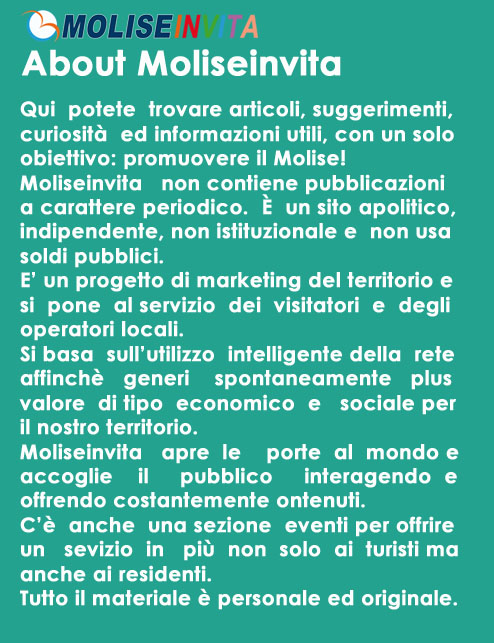 about moliseinvita 7